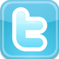 Purely Fiddle Twitter Logo